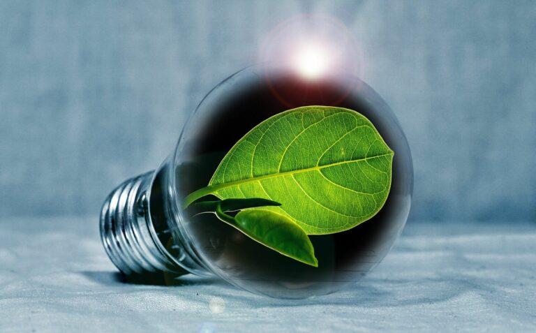 Fenntartható Energia Zöld Energia